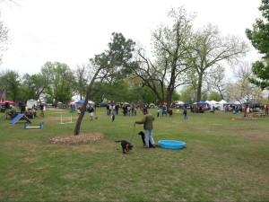 Barkwalk 2013 - Park Tulsa